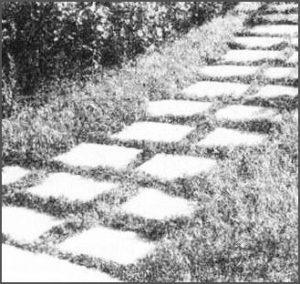 Комбинированное газонно-плиточное покрытие